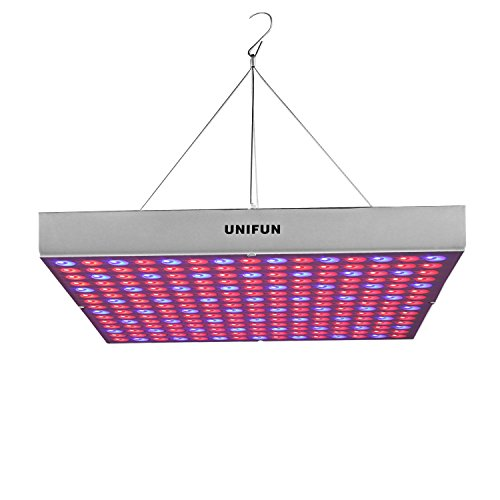 The 8 Best Led Grow Lights Of 2020 Fabathome